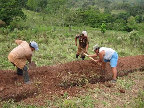 Lupe, Modesta and Virginia hard at work in El Guabo